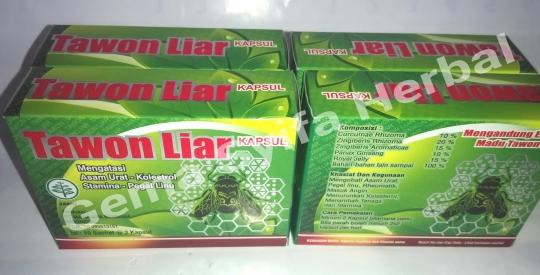 jual grosir murah kapsul tawon liar asli obat alternatif asam urat kolesterol quot gema